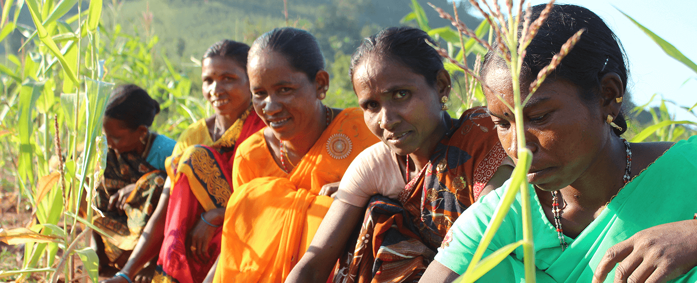 Climate Resilient Zero Budget Natural Farming